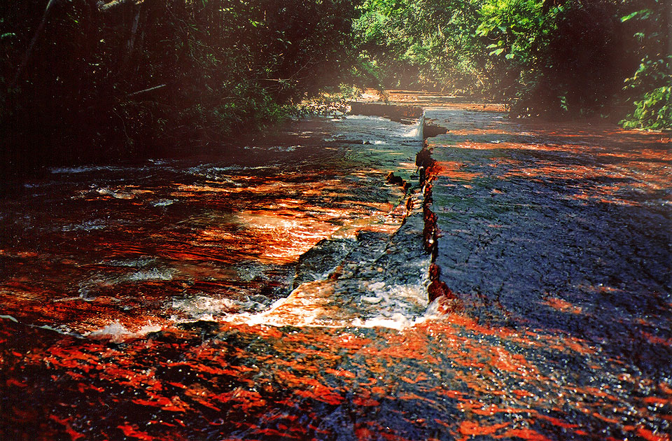 Blood Red Riverbed
