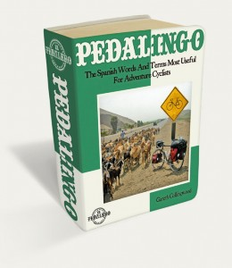 Pedalingo Ebook Image