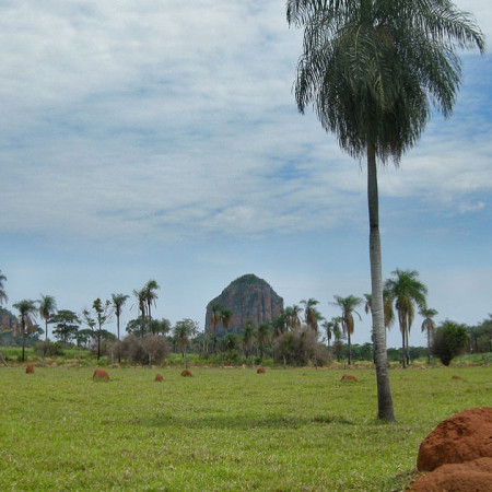 Termite-Mounds-Near-Yby-Yau
